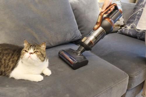莱克立式无线吸尘器轻巧便利不缠毛,应对宠物掉毛更省心