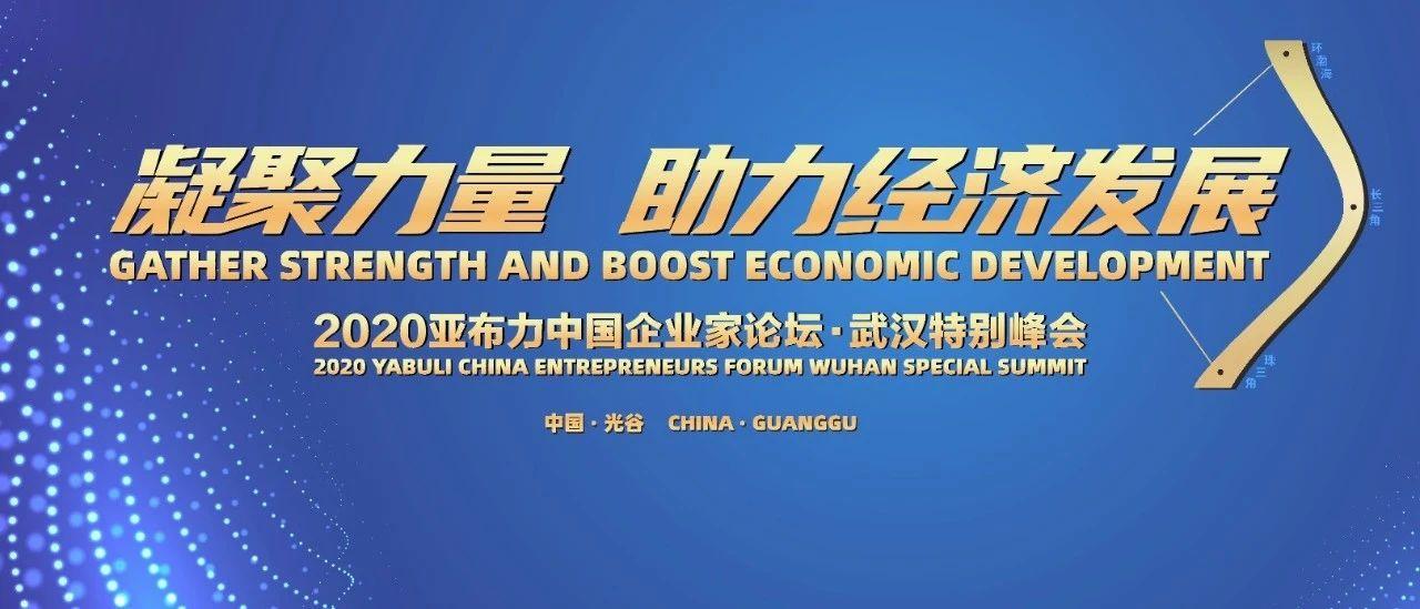 亚布力中国企业家论坛2020武汉特别峰会延期举办