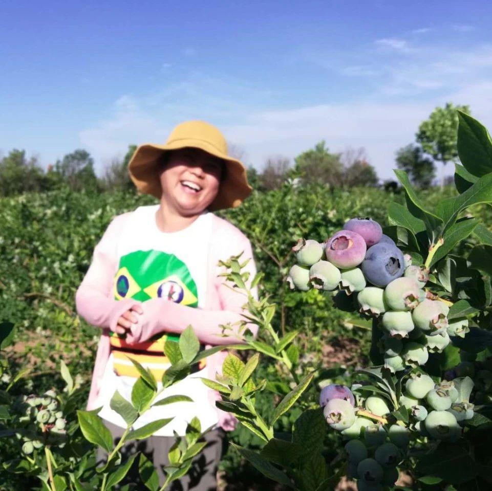 """西瓜、紫蒜、蓝莓……即墨的农产品频频""""抢镜"""",""""地盘战""""上演"""