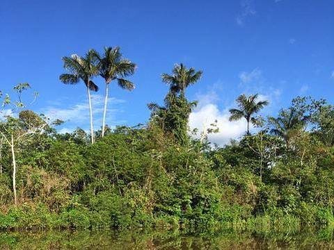 Infosys加入由亚马逊和Global Optimism共同创立的《气候宣言》