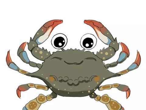 中国捕捞量第一的甲壳类水产,竟是被晒干做成虾皮的毛虾