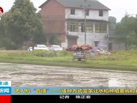 石蟆镇:天鹰兄弟植保无人机水稻直播更省时省力省钱