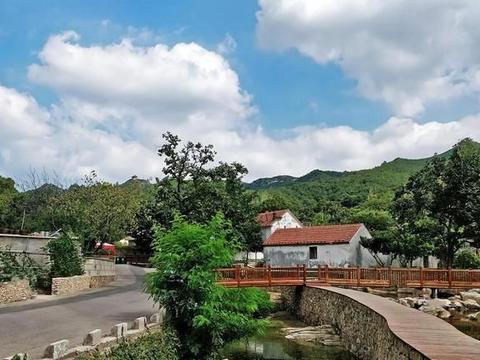 山东十里杏花村,一片花海两排老房,最美乡村,归威海还是烟台?
