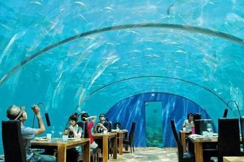 比利时一座水下餐厅,建在33米泳池下,一顿3000还有特殊要求