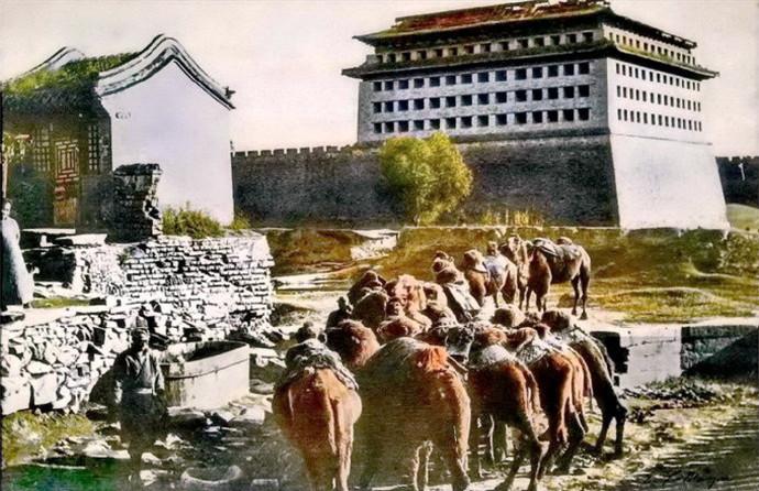 清末老北京的驼队,皇城里的乡野气息