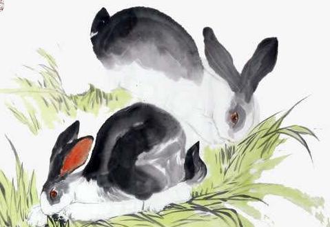 天生招财体质的3个生肖女,最能给家庭带来财富,尤其是生肖兔