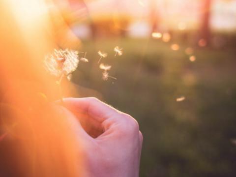好消息:利敏舒益生菌为过敏性皮炎患者的治疗带来新希望