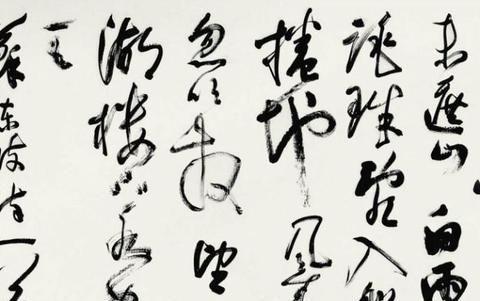 中书协副主席孙晓云的草书,更接近张旭的草书,妙于肥