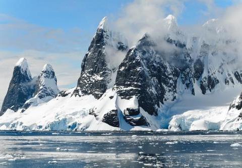 塑料污染无处不在,在南极,体长不到1毫米的生物体内发现微塑料