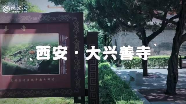 大兴善寺始建于晋武帝泰始二年(226年)……