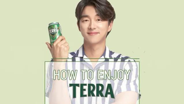 200626 | TERRA相关更新 怎么享受TERRA No.3 神秘的TERRA词典