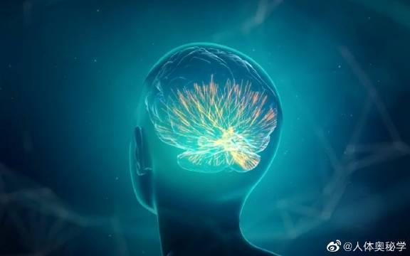 阿尔兹海默病 阿尔茨海默病(AD)是老年痴呆的一种……