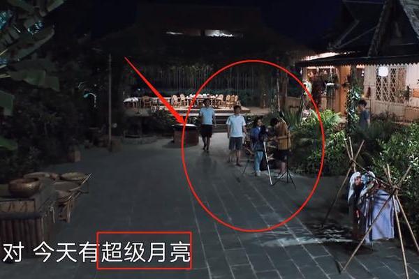 张子枫被超级月亮吸引时,谁注意黄磊在干啥?老父亲的慈爱藏不住