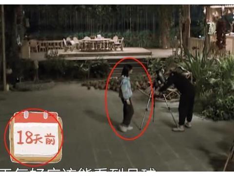 """张子枫等到超级月亮,围观时黄磊的手抢镜了,""""老父亲""""既视感"""