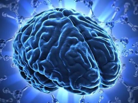 终于实现:绘制大脑神经纤维路径交叉点,创建大脑真3D不难了!