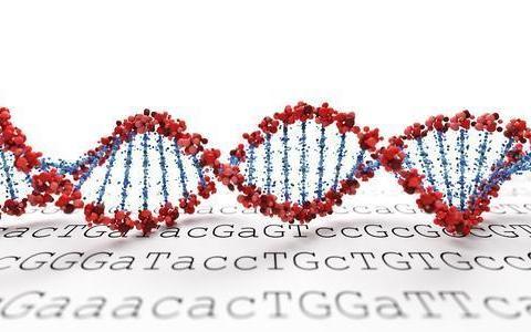 基因组学解决方案提供商获投1.15亿 实现一步法精准捕获目标基因
