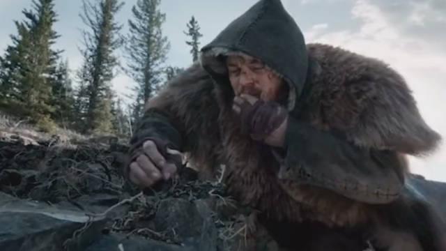《荒野猎人》为什么会有这么多人喜欢小李子……