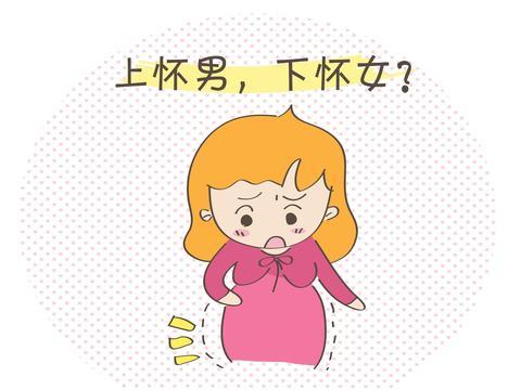 """同为孕中期,一个""""上怀"""",一个 """"下怀""""?和生男女有关系吗?"""