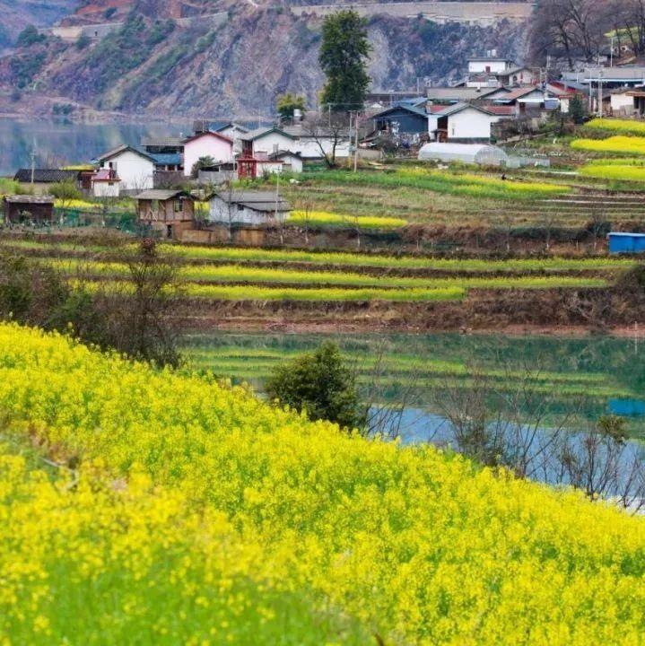 今年迪庆州生态扶贫投入资金将超13亿元