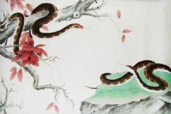 生肖蛇的朋友要鸿运当头了,家人也跟着走好运,能否接住就看你了