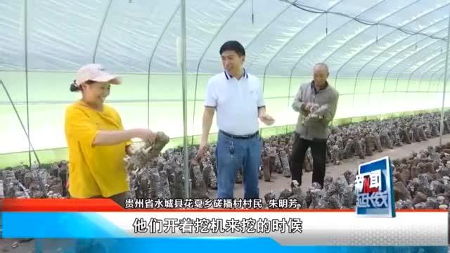 """徐祥峰:让大家喝上一碗""""米汤""""的村党委书记"""