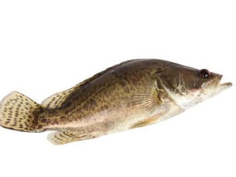 """安徽名菜""""臭鳜鱼""""来历不凡,闻着臭吃起来香,是徽州菜的代表"""