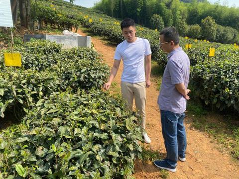 科特派助力白茶生产线自动化提升改造