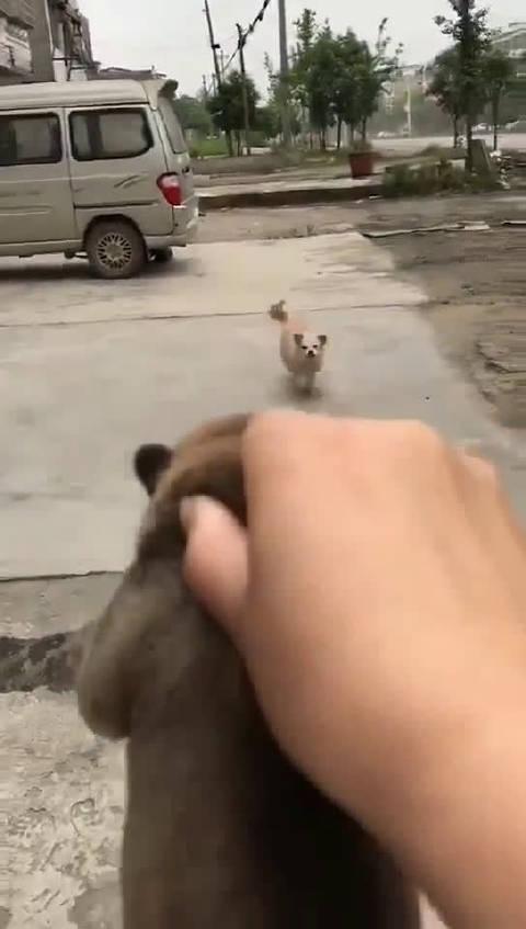 你儿子在我手上,再不回家我就撕票