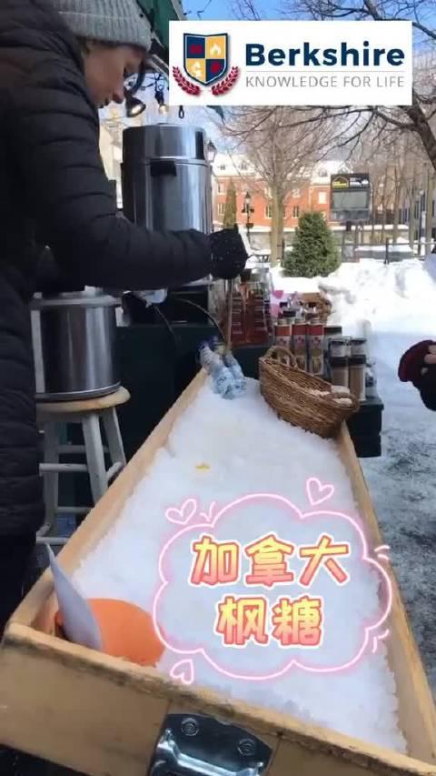 加拿大特色枫糖,这个不是麦芽糖,是用糖枫树的树汁熬制而成……
