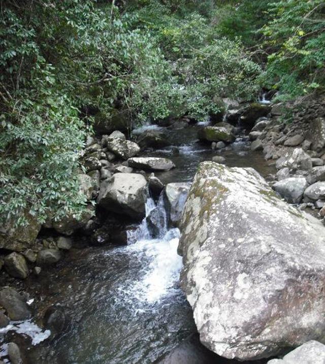 """老汉从河边捡回一块""""玛瑙原石"""",上缴后,喜得不得了"""