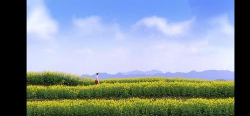 从城市逃离,在农村享受田园生活