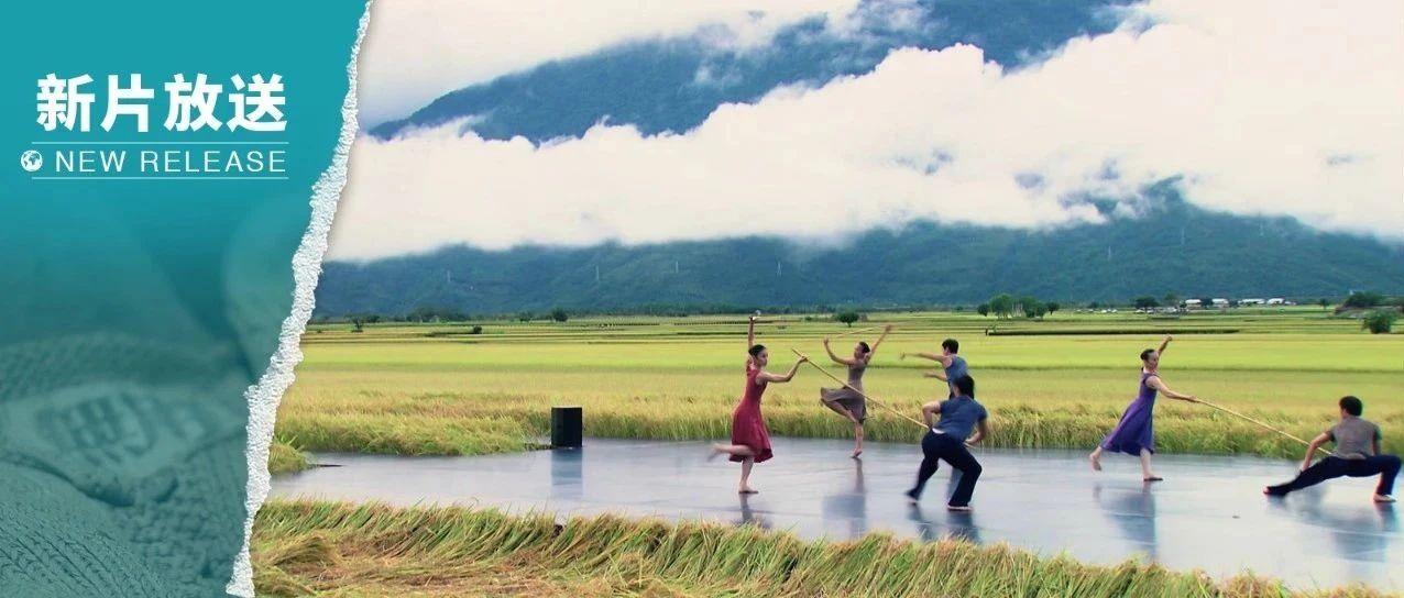 中国美 | 脚踏文化沃土,也爱天马行空