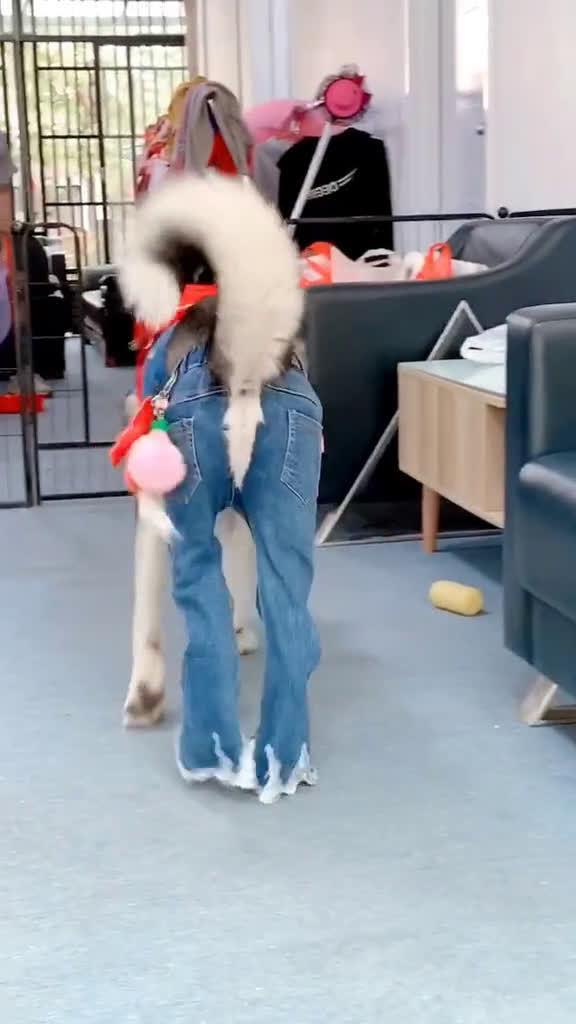 开裆裤穿的最性感的一个