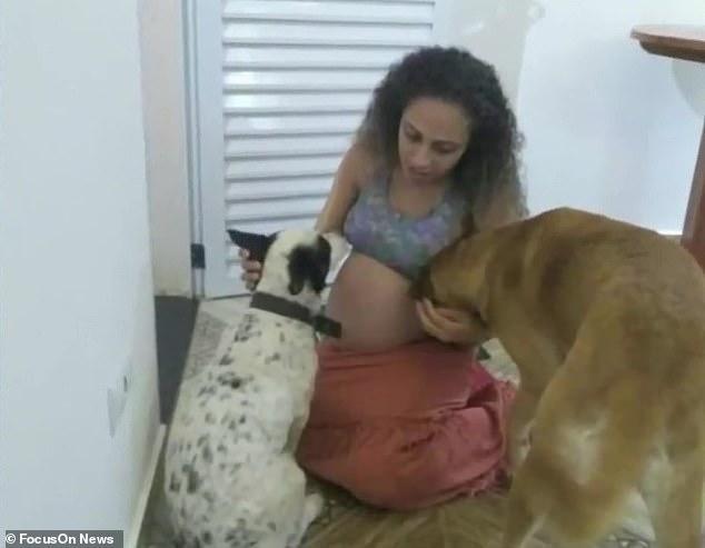 巴西女子备孕9年,产下双胞胎女儿,宠物狗却因嫉妒将婴儿咬死