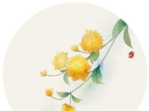 经典暖心的治愈系说说,精致唯美,触动心灵!