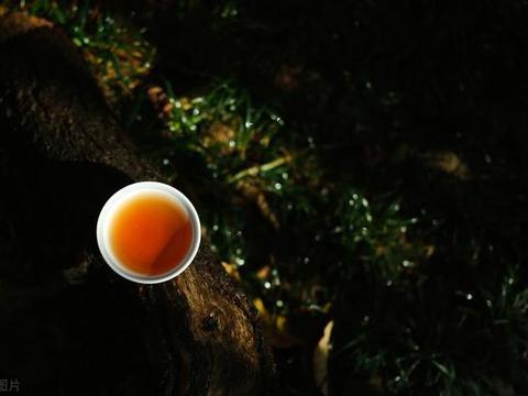 """武夷岩茶的""""武夷酸"""""""