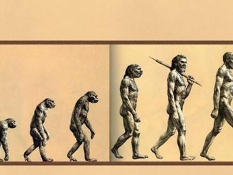 人类的祖先是由什么生物进化而来?科学家猜测可能是鱼类
