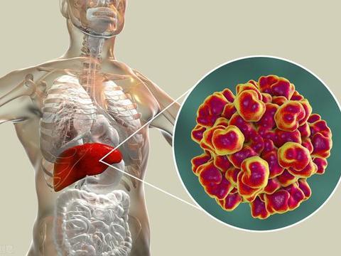 """身体出现这5种信号,可能是肝脏""""生病""""了,养肝护肝刻不容缓"""