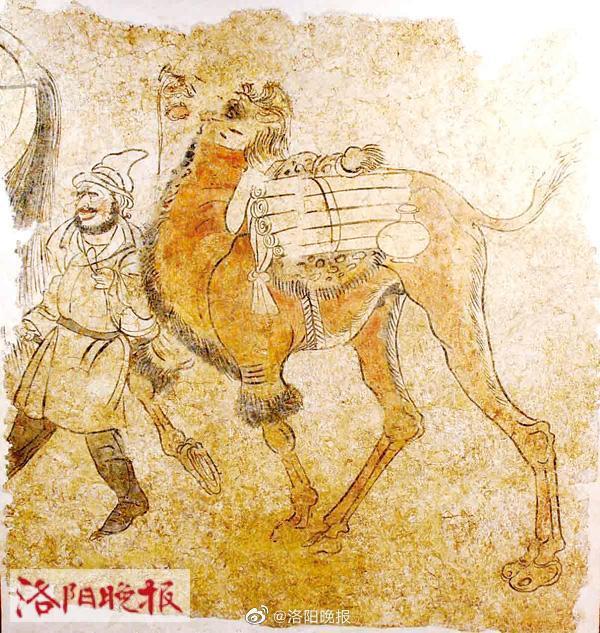 洛阳古代艺术博物馆征集新馆名!快来看看,你说叫啥好?