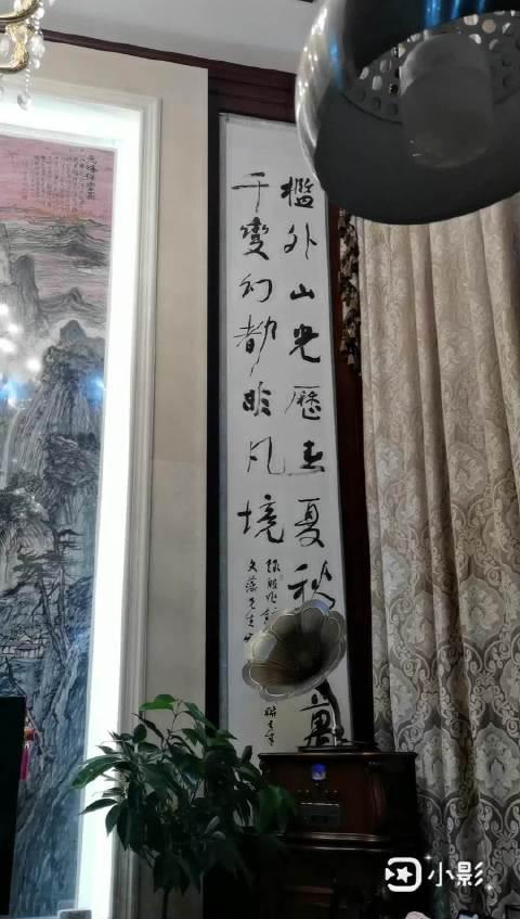 在泰州美协主席、原国画院院长徐文藻别墅里參观……