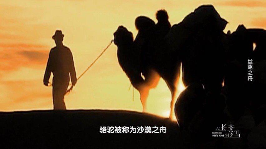 今起,《从长安到罗马》在东南卫视黄金档播出