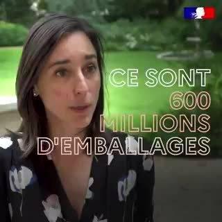法国环保部国务秘书(副部级)Brune Poirson最近召见了法国所有送