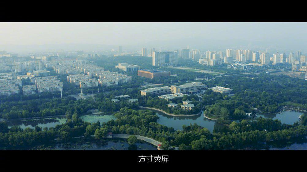 平顶山博物馆馆藏文物系列短视频《鹰蕴》来啦!