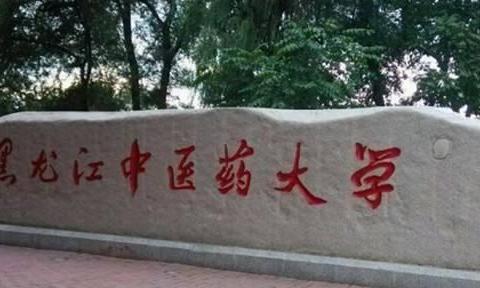 黑龙江二本大学有哪些?附大学排名及分数线,可关注这几所高校