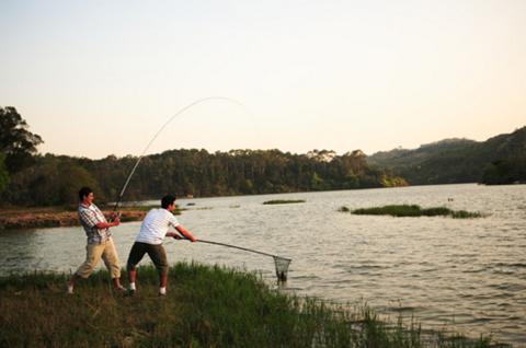 钓到一只大肚子的鱼 从它嘴巴拉出一只和它差不多一样的鱼