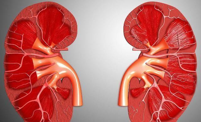 """尿酸太高,小便会有3个特别的""""变化"""",若全占,或是该养肾了"""