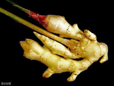 姜农教我保存生姜的几种方法,简单实用,以后不用担心干瘪发芽了