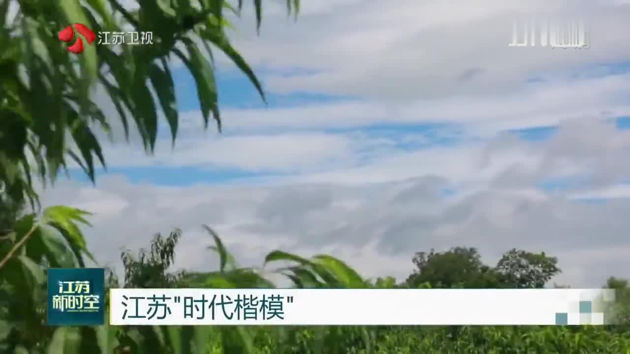 """江苏""""时代楷模"""" 糜林:让农民富起来就是我的科研专利成果"""