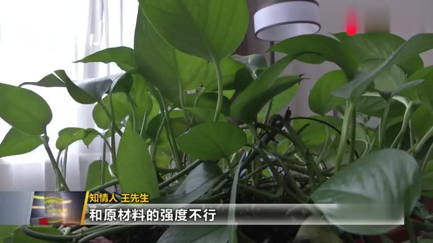 搅拌还是搅乱?渭南蒲城业主交房前发现房屋质量异常,空手就能挖墙脚!陕视记者实地调查