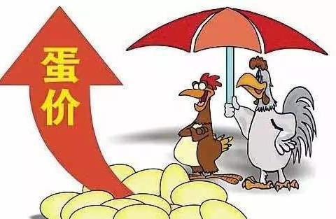 蛋价大范围上涨,涨价能持续多久?7月3日全国鸡蛋价格涨跌表